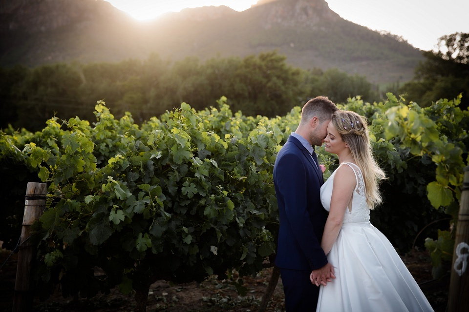 Holden Manz Wedding Cape Town Wedding Photographer Franschhoek Wedding Karina Conradie Photography Cape Winelands Wedding Photographer (162)